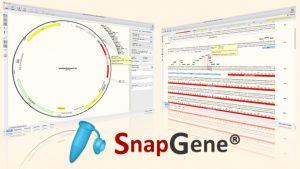 SnapGene 5.3.0 Crack + Registration Code {Latest} 2021 Full Free